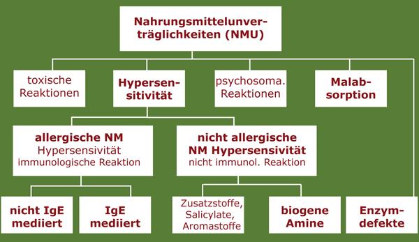 Folgende Abbildung verdeutlicht die Einteilung der Nahrungsmittelunverträglichkeiten.